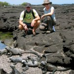 Marine Iguanas soaking up the midday heat