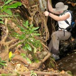Trekking the jungle s of Northern Thailand