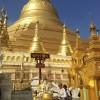 PagodaBuddha