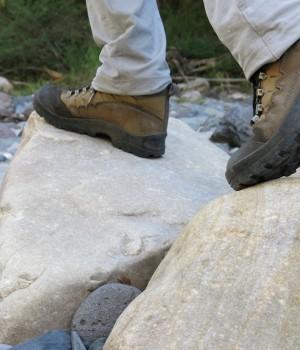 Trekking carnarvon gorge