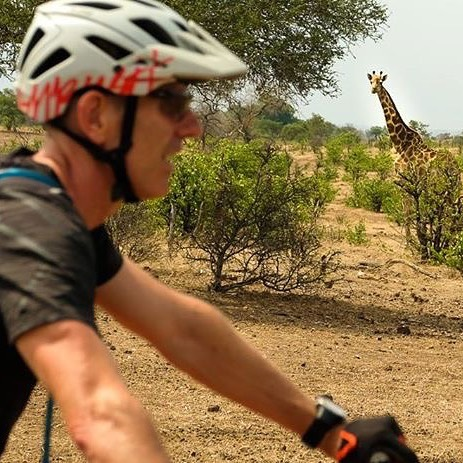 On yer left Ambush Giraffe MTBsafari Mashatu MashatuGameReserve Fujixt2 wildmagazine